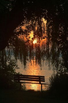 Can I get married right there? Or just enjoy a sunset like that on that bench when we get married?