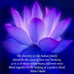 <3 The diversity in the human family should be the cause of love and harmony, as it is in music where many different notes blend together in the making of a perfect chord. 'Abdu'l-Bahá