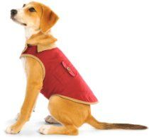 Dog Gone Smart 20-Inch Barn Jacket for Dogs, Berry