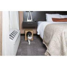 Litter Kwitter Cat Toilet Training System & Reviews | Wayfair Cat Litter Box Enclosure, Cat Litter Pan, Cat Toilet Training, Pet Gear, Cat Room, Cat Condo, Cat Accessories, Cats, Room Ideas