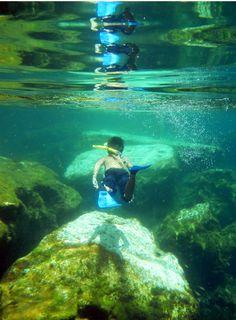 Cenote Jardin del Eden in the Riviera Maya | A Canuck in Cancun