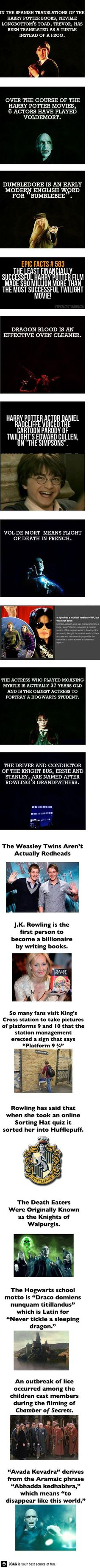 "Harry potter facts and by ""Voldermort"" they mean Tom Riddle, He Who Must Not Be Named, and Voldermort combined."