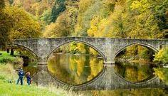 Een bos bomvol warme kleuren, het klaterende geluid van slingerende stroompjes en een knisperend bladertapijt...In de Ardennen is onze herfst écht op z'n mooist. Travel Abroad, Hiking Trails, Day Trip, Belgium, Netherlands, Sunshine, To Go, Environment, Wanderlust