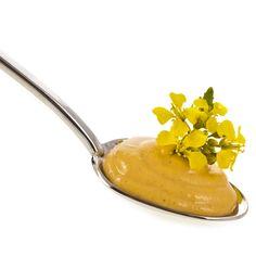gelber senf senf gesund senf pflanze