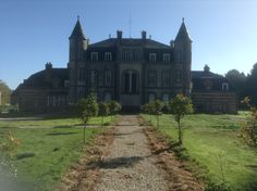 newly laid and planted central walkway to rear of chateau 2013