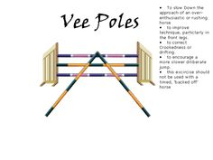 These are really good exercises to help keep you and your horse in the the middle of the fence plus it will teach your horse to snap their feet up