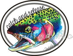 """Huge 12"""" Catch and Release Signed Laminated Vinyl Rainbow Trout Decal"""