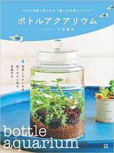ボトルアクアリウム | 千田 義洋 | 本-通販 | Amazon.co.jp