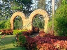 Hirwa Van Gardens #silvassa. http://www.resortsinsilvassa.com/silvassa-sightseeing