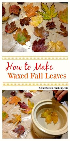How to Make Waxed Fall Leaves. How to make waxed fall leaves for autumn and Thanksgiving decor. Easy instructions for waxing fall leaves for autumn or Thanksgiving decorations. Thanksgiving Diy, Thanksgiving Celebration, Deco Nature, Autumn Decorating, Decorating Ideas, Porch Decorating, Fall Projects, Diy Projects, Leaf Projects