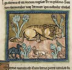 Lion, English Bestiary (Royal 12 F), author unknown, 13th century, housed at the British Library.