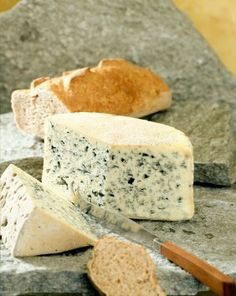 bleu d'auvergne - soft sheep's milk cheese from the south of france