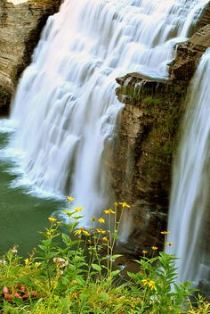 Middle Falls, Letchworth State Park, NY, US Not too far from Britt's college Go Camping, Outdoor Camping, Letchworth State Park, Park Art, Closer To Nature, Greatest Adventure, State Parks, Places To See, Fine Art America