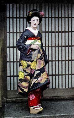 Hollyhock Kimono 1930s  A postcard of Maiko Fukiko in a beautiful kimono with a Hollyhock pattern.
