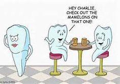 Dental Hygiene Humor - Bing Images