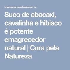 Suco de abacaxi, cavalinha e hibisco é potente emagrecedor natural | Cura pela Natureza