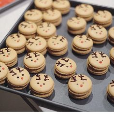 Raindeer macaron It is almost that time of the year again ☺️☺️ Can not … Advertisements Raindeer macaron It is almost that time of the year again ☺️☺️ Can not wait to get the christmas stocking out next to the… Continue Reading → Macaron Cookies, Macaron Recipe, Christmas Snacks, Christmas Cooking, Macarons Christmas, Baking Recipes, Cookie Recipes, Dessert Recipes, Cute Desserts