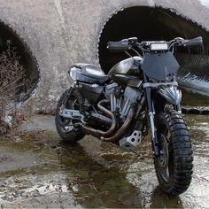 On BikeBound.com: XR1200 Sporty by @beard.wrench. Link in Profile #sportster #xr1200 #tracker #scrambler #harleydavidsonsportstergirls