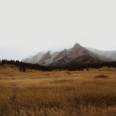 Boulder... I'd recognise these mountains anywhere, I miss seeing them everyday