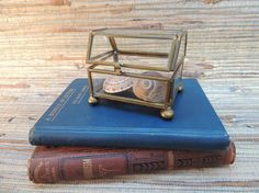 Check out this item in my Etsy shop https://www.etsy.com/listing/507848501/vintage-brass-glass-small-display-box