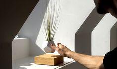 LYFE - Set your plants free by Simon Morris — Kickstarter