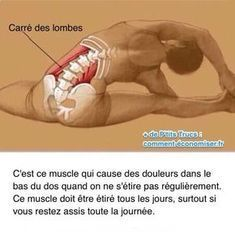 """Le muscle, appelé """"carré des lombes"""", est souvent à l'origine de cette douleur. C'est un muscle qui est situé dans l'abdomen, au niveau des lombaires. Heureusement, il existe un remède efficace pour arrêter cette douleur. Découvrez l'astuce ici : http://www.comment-economiser.fr/mal-bas-du-dos-comment-arreter-douleur-quand-on-est-assis.html?utm_content=buffer9f2e2&utm_medium=social&utm_source=pinterest.com&utm_campaign=buffer"""
