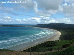 Nouvelle Zélande, des plages à perte de vue. www.plantesdusud.com