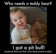 Who Needs A Teddy Bear??  I've Got A Pit Bull!