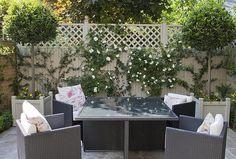 Tiny courtyard garden: Chiswick courtyard garden