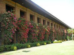Fort Ilocandia Ilocos, More Fun, Philippines, Garage Doors, Sidewalk, Spaces, Outdoor Decor, Home Decor, Decoration Home