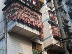 Bacon is seen hanging from an apartment window to dry in Wuhan, capital of central China's Hubei Province. The layers of hanging bacon curtained all the windows of the apartment on the third floor. Pork Strips, Bacon, China Food, Wuhan, Pork Belly, Easy Cooking, Food Network Recipes, Nom Nom, The Cure
