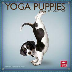 yoga pups | Yoga Puppies 2013 Mini Wall Calendar | | CALENDARS.COM