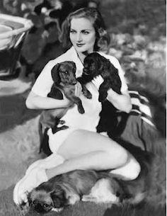Carole Lombard, dachshund lover ♥♥♥ dauchshund dauchshunds weenier weeniers weenie weenies hot dog hotdogs doxie doxies ♥♥♥