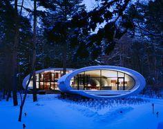 Arquiteto japonês projeta casa-concha de concreto em meio à floresta - Casa e Decoração - UOL Mulher