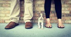 puppy announcement #puppyannoucement