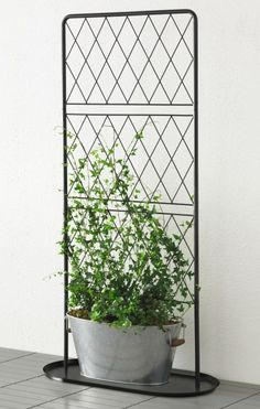IKEA - BARSÖ, Trellis with base plate, The trellis with base plate helps support potted climbing plants.You can create a cozy, private outdoor space by covering the trellis in plants. Indoor Garden, Indoor Plants, Outdoor Gardens, Indoor Climbing Plants, Ikea Fans, Green Design, Decoration Ikea, Balkon Design, Garden Trellis