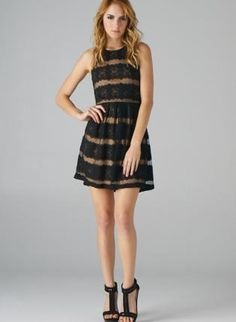 Black and Taupe Lace Striped High Neckline Dress,  Dress, lace dress  striped dress  black and, Chic