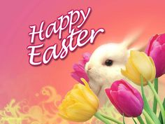 Happy Easter Images 2018 are available on this official website. You all can check this article for the latest Easter Images, Easter Pictures, Easter Photos, Easter Pics, and Easter Wallpapers are here. Easter Sunday Images, Happy Easter Photos, Happy Easter Messages, Easter Bunny Pictures, Happy Easter Wishes, Happy Easter Sunday, Happy Easter Greetings, Bunny Images, Sunday Wishes