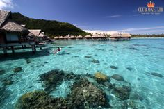 Tahiti. The word evokes visions of an island paradise. With 118 islands boasting high, rugged mountain peaks, coral reefs, turquoise-blue lagoons, white sand, palm-fringed beaches, and luxuriously intimate resorts, each island paradise has something for everyone.  #ClubOneAir #COA #LuxuryTravels