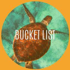 12 Best Travel Bucket List images in 2020 Distance, Travel Inspiration, Bucket, Long Distance, Buckets, Aquarius