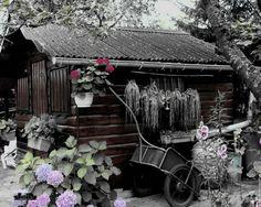 house-garden.jpg 1,280×1,024 pixels