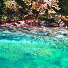 "Yushin gorge in Tanzawa, Kanagawa (1.5hr from Tokyo), Japan 都内から1時間半の知られざる秘境。絶景""ユーシン渓谷""神秘のブルーを訪れたい"