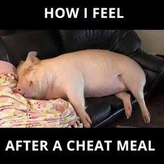 Cheat meals are the death of me! http://ift.tt/2oX6jpa  Cheat meals are the death of me! http://ift.tt/2oX6jpa  mealprep mealprepster mealplan foodprep foodprepping mealprepping foodporn mealporn fitnessp
