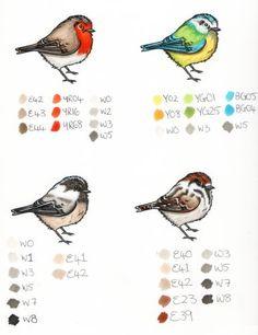 Colour Tutorial for Garden Birds by Becki Mayes