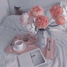 Baby Pink Aesthetic, Peach Aesthetic, Princess Aesthetic, Aesthetic Colors, Flower Aesthetic, Aesthetic Images, Aesthetic Collage, Aesthetic Vintage, Aesthetic Anime