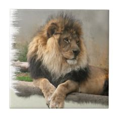 Lion Lovers King of the Jungle Ceramic Tile