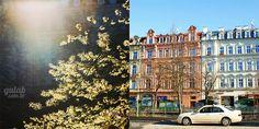 Leste Europeu: dica de onde comer em Karlovy Vary - Gulab
