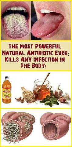 Natural Antibiotic Ever Which Is Most Powerful