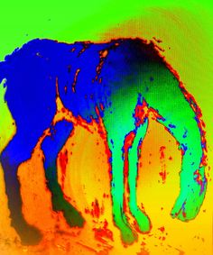 My Horse, Horses, She Left Me, Morning Songs, Mother And Father, Then And Now, Art Pieces, Singing, Paintings