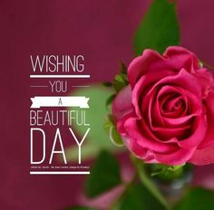 Good Morning! Wishing You A Beautiful Day.
